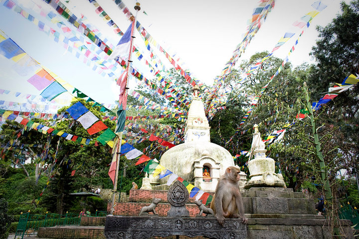 Getting lost in Kathmandu's Monkey Temple