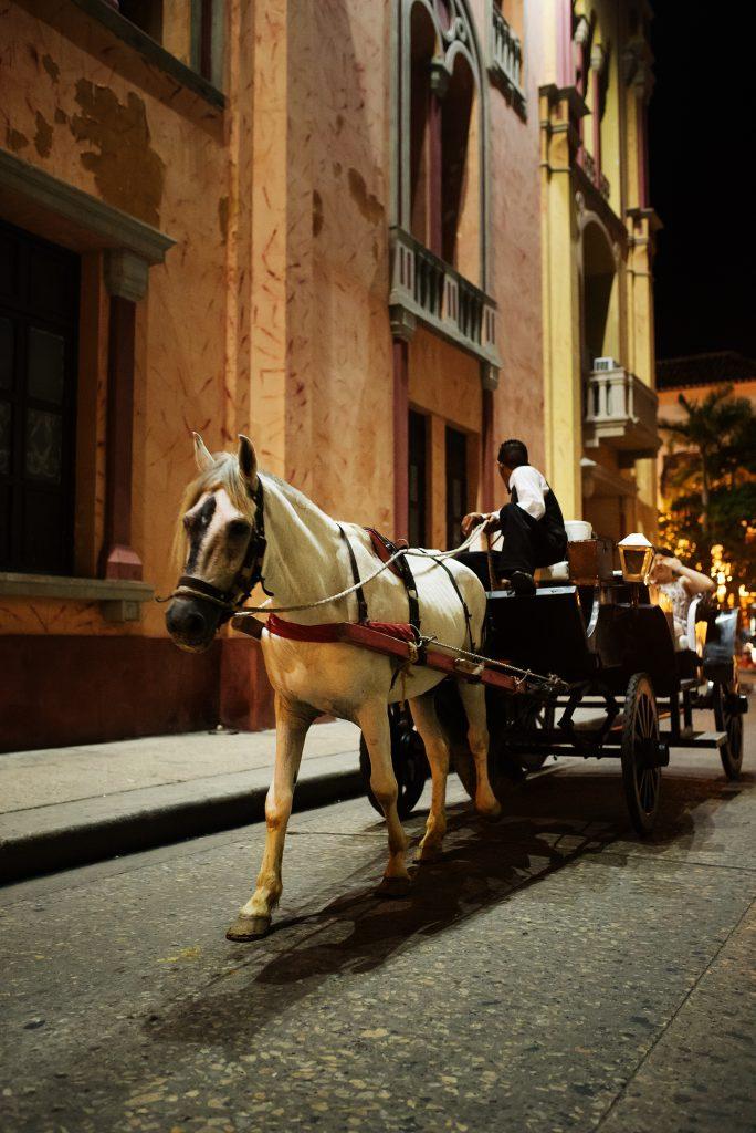 five-family-friendly-activities-in-cartagena