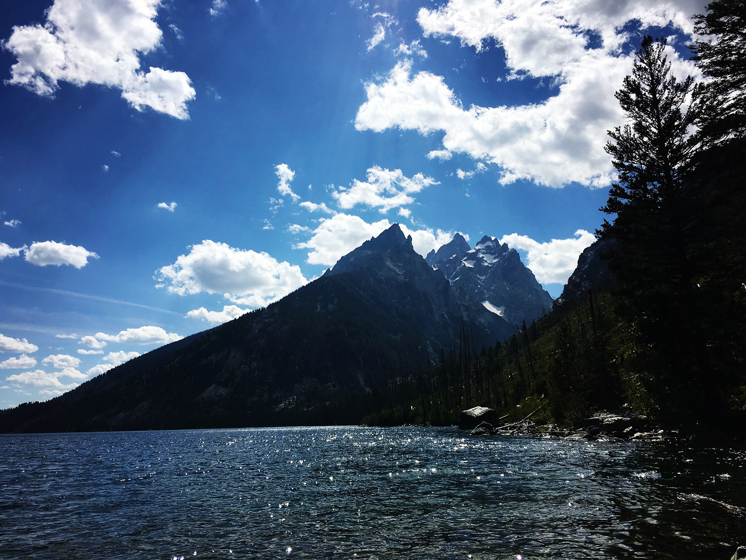 Jackson Hole family travel guide