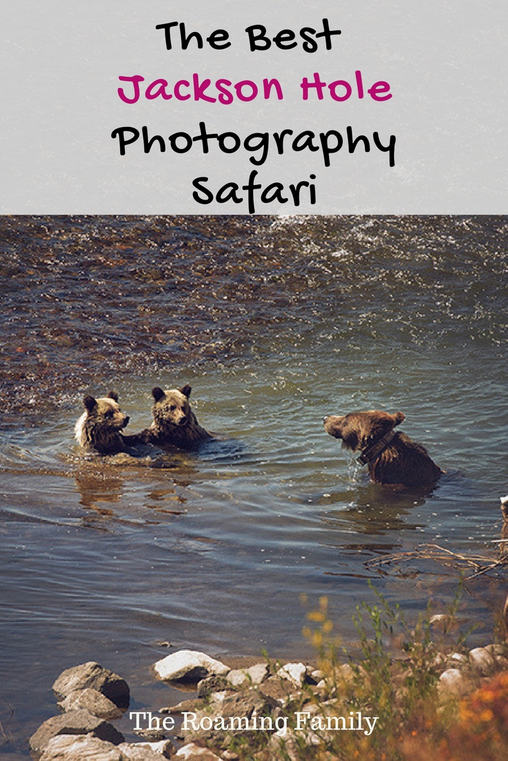 jackson-hole-photography-safaris