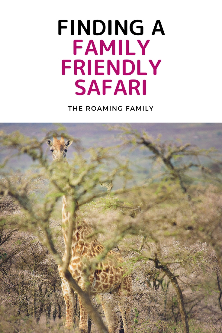 family-friendly-safari