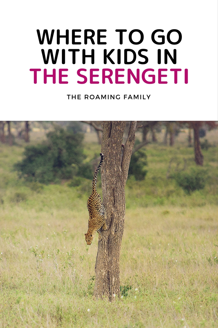serengeti-safari-camp-with-family