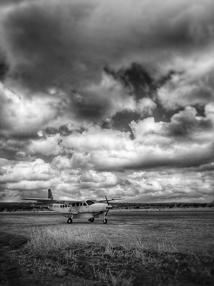 safari charter flight